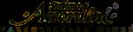 Stefano Accordini logo
