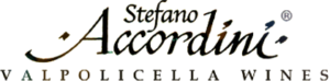 Stefano Accordini logo